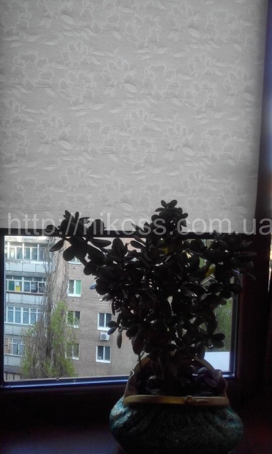 Тканевые ролеты в Киеве для дома и офиса. Есть ли альтернатива?