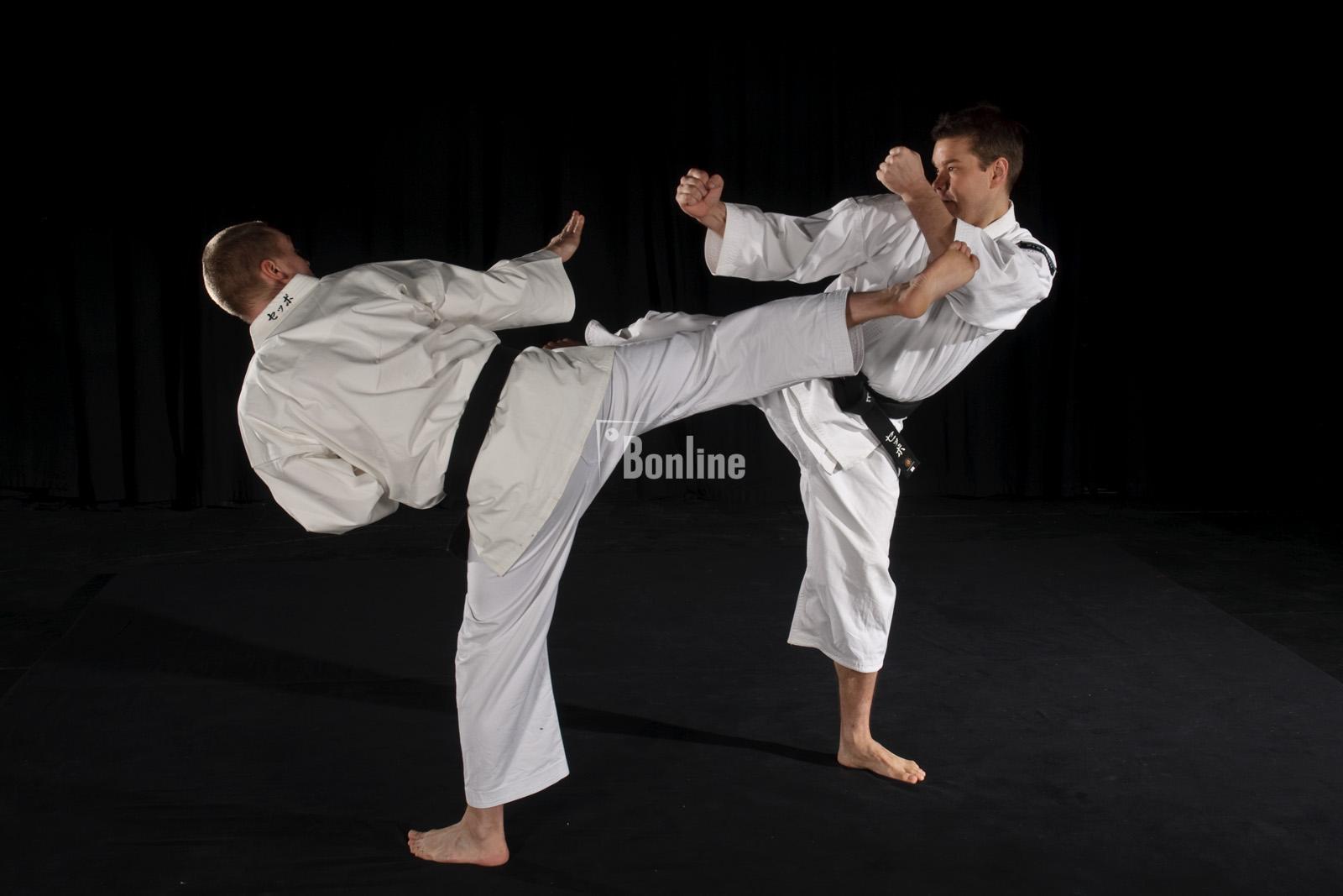 Тренировка. Обучение японскому боевому искусству.