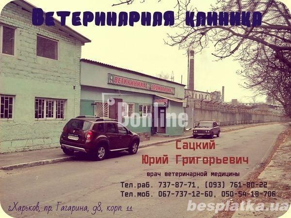 Ветеринар Харьков тел. (093)408-09-36/
