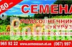 Семена подсолнечника,кукурузы Syngenta,Monsanto,LG 1950грн 0999659222