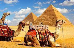 Горящие туры в Египет....бество  к солнцу!!