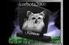 Эвтаназия (усыпление) животных 067-730-57-37