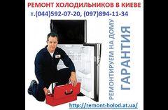 Ремонт холодильников Киев  т.592-07-20 все районы, недорого.
